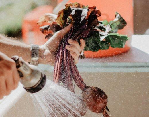 ¿Cómo Preparar una Solución Desinfectante de Cloro?